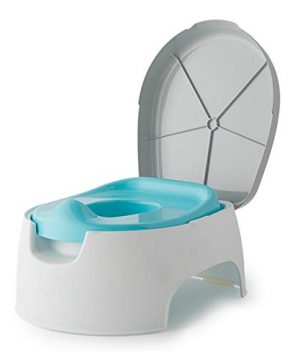Potty Seat and Stepstool for Potty Training and Beyond