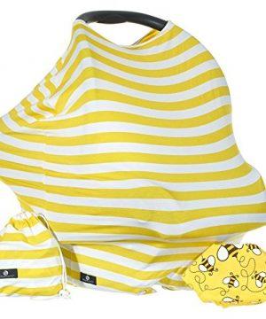 Baby Benjamin Car Seat and Nursing Cover