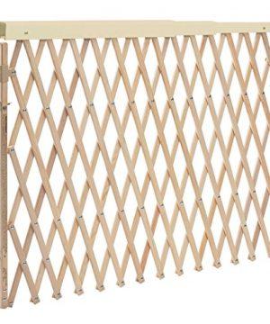 Evenflo Expansion Walk Thru Room Divider Gate