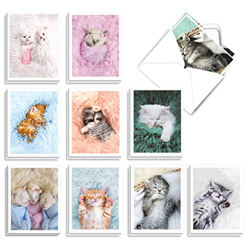 Fluffy Furballs - 20 Adorable Baby Kitten Invitations with Envelopes