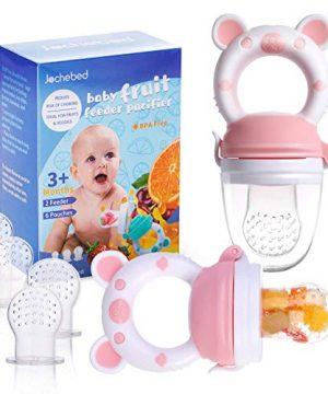 Baby Fruit Food Feeder Pacifier - Fresh Food Feeder