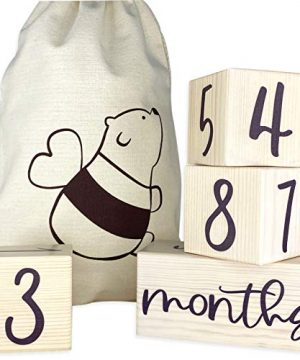 Baby Monthly Milestone Blocks for Baby Boy or Girl